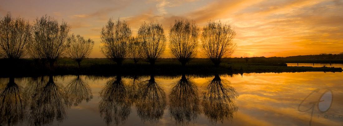 Hoogland-West spiegelende bomen