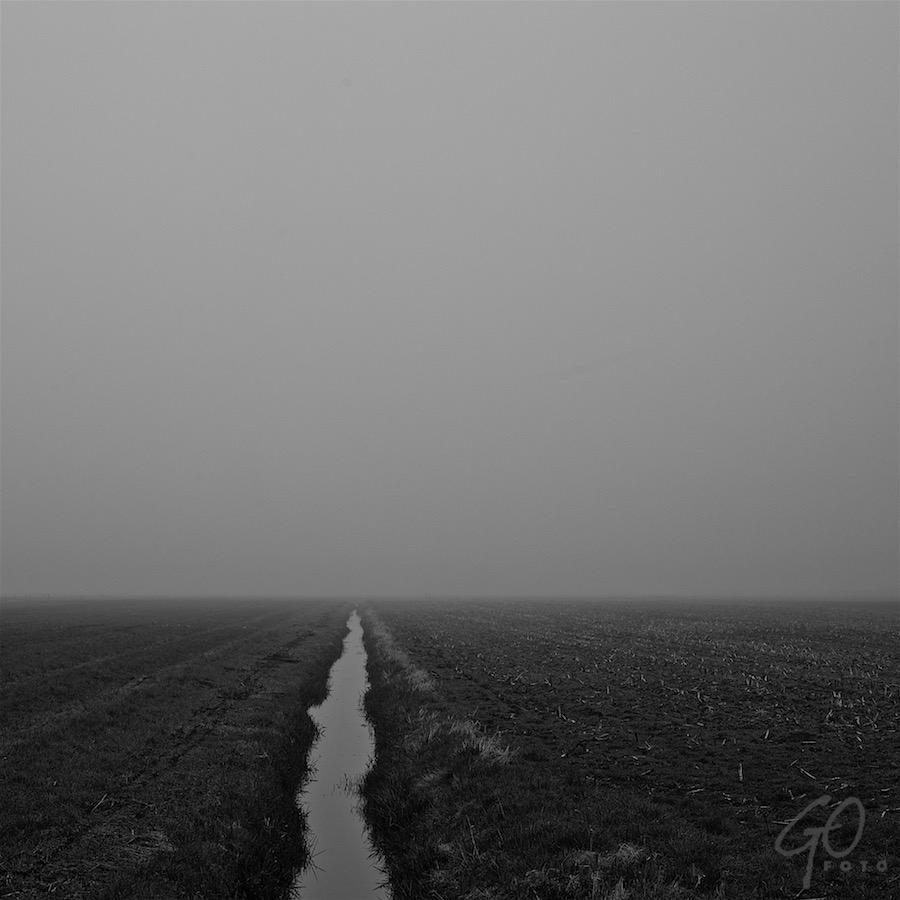 Landschap als medicijn. Foto van een weiland met een sloot bij mist.