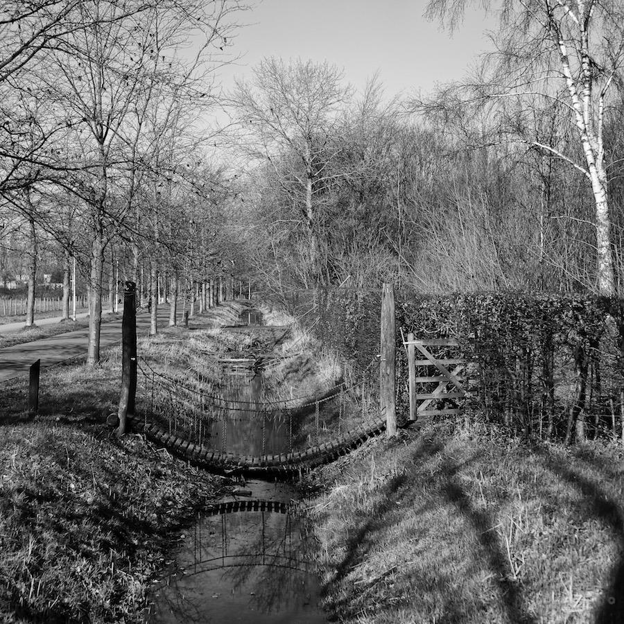 Stadspark Schothorst Hoogland. Foto van sloot met hangbrug.