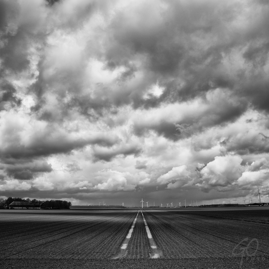 Koningsdag 2016. Foto in zwart-wit van geplukt bollenveld onder dreigende hemel.